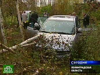 Петербуржцы увидели своих праотцов.НТВ.Ru: новости, видео, программы телеканала НТВ