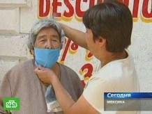Свиной грипп из мексики thumbnail