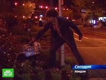 Ночные садовники.Великобритания, экология.НТВ.Ru: новости, видео, программы телеканала НТВ