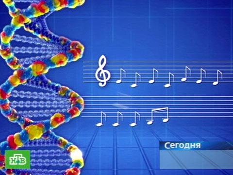 Музыка у всех в крови.медицина, музыка, наука, эксперименты.НТВ.Ru: новости, видео, программы телеканала НТВ