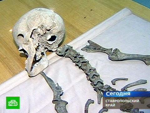 Археологи нашли человекобарана и мегаконя.археология, история, Северный Кавказ.НТВ.Ru: новости, видео, программы телеканала НТВ