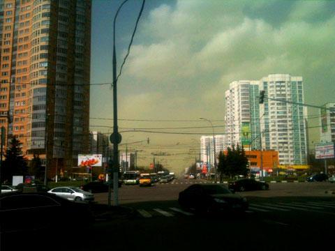 Зеленые облака перепугали москвичей.деревья, курьезы, Москва.НТВ.Ru: новости, видео, программы телеканала НТВ
