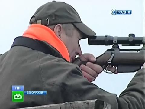 Защитники животных объявили войну охотникам.аукционы, Белоруссия, животные, охота, охотники.НТВ.Ru: новости, видео, программы телеканала НТВ