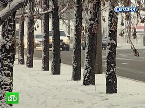 Москву ждут суровые погодные испытания под Новый год.ветер, гололед, мороз, Москва, непогода, Подмосковье, снегопад.НТВ.Ru: новости, видео, программы телеканала НТВ