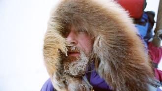 Конюхов перебрался через трещину во льдах и искупал собак
