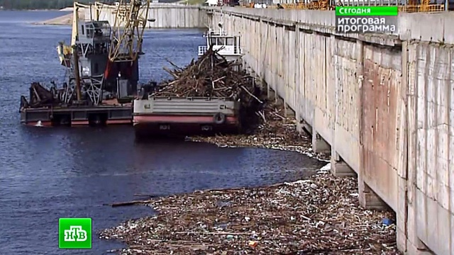 Отравленная река Волга умирает, превращаясь всточную канаву.Волга, реки, экология.НТВ.Ru: новости, видео, программы телеканала НТВ