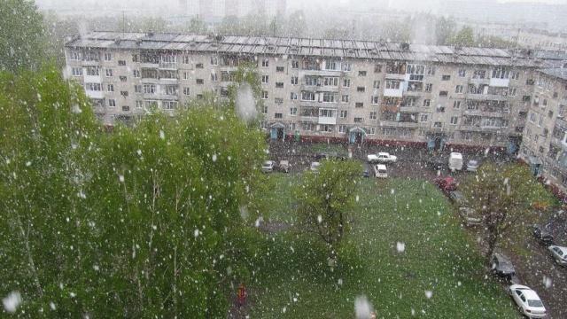 ВКузбассе продолжается снежное лето.Кемерово, Кемеровская область, Кузбасс, погода, снегопады.НТВ.Ru: новости, видео, программы телеканала НТВ