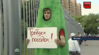 «Болотная» фигурантка плюнула в<nobr>человека-овоща</nobr> уМосгорсуда