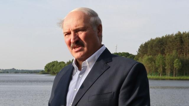 Лукашенко поймал в Припяти огромного сома.Белоруссия, Лукашенко, рыба, рыбалка.НТВ.Ru: новости, видео, программы телеканала НТВ