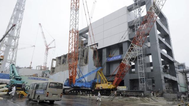 На опасной «Фукусиме» снова нашли утечку зараженной воды.радиация, Фукусима, ЧП, Япония.НТВ.Ru: новости, видео, программы телеканала НТВ