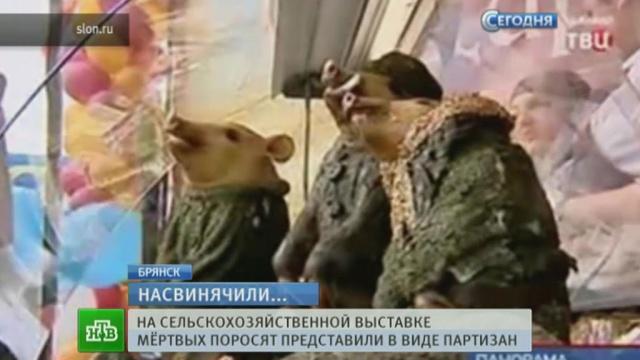 В Брянске из мертвых свиней выставили памятник партизанам.скандал.НТВ.Ru: новости, видео, программы телеканала НТВ
