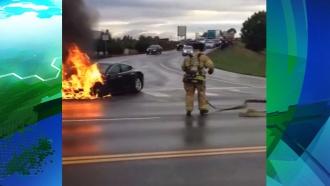 Видео горящего электрокара на дороге в США повергло в шок автолюбителей
