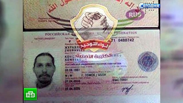 «На что он рассчитывал?»: впосольстве РФ вДамаске прокомментировали похищение Журавлёва.блогеры, похищения, россияне, Сирия.НТВ.Ru: новости, видео, программы телеканала НТВ