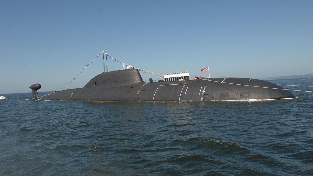 появилось фото, живые нерпы на корпусах подводных лодок фото причиной