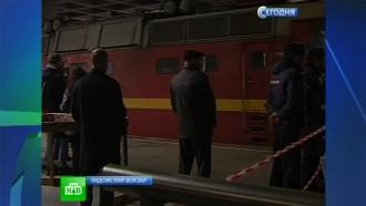 Вслед за арестованными гринписовцами в Петербург едут адвокаты
