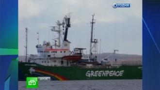 Питерский суд решает судьбу последнего активиста Greenpeace