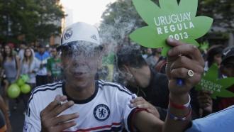 Уругвай легализовал продажу ипроизводство марихуаны