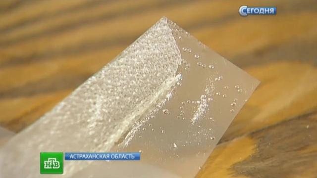 Астраханские ученые придумали съедобную упаковку для продуктов.Астрахань, изобретения, продукты, ученые.НТВ.Ru: новости, видео, программы телеканала НТВ