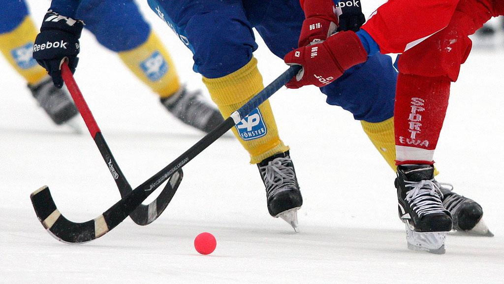 Картинки по запросу хоккей с мячом
