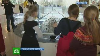 Уральцы отмечают годовщину падения челябинского метеорита ирассказывают оспасительном НЛО