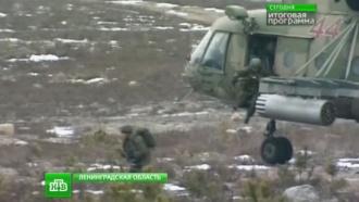 Стрелять стали больше илучше: армию России проверили вделе