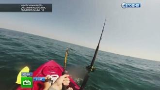 В Америке акула попалась на крючок и прокатила рыбака вдоль побережья