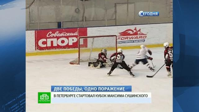 Юные хоккеисты обменялись шайбами на Кубке Максима Сушинского.Санкт-Петербург, соревнования, спорт, хоккей.НТВ.Ru: новости, видео, программы телеканала НТВ