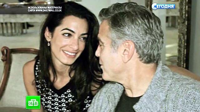 Защитница Ассанжа покорила холостяка Клуни эрудицией инеприступностью.адвокат, актеры, Ассанж, Голливуд, знаменитости, Клуни, помолвка, свадьбы.НТВ.Ru: новости, видео, программы телеканала НТВ