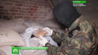 Люди гибнут за янтарь: вКалининградской области борются за драгоценный минерал