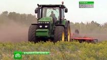 Простой механизатор из Рязанской области защитит честь России на чемпионате мира по пахоте