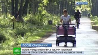 Петербуржцы хотят проложить маршрут скоростной дороги в обход Удельного парка