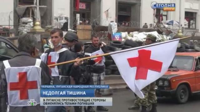 Украинские войска не дали луганским ополченцам забрать тела убитых товарщией.ЛНР, Луганск, Украина, вооруженный конфликт, перемирие.НТВ.Ru: новости, видео, программы телеканала НТВ
