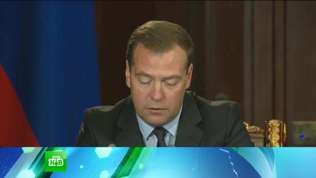 Россию ждут стабильные цены из-за «приличного» урожая.Медведев, зерно, сельское хозяйство, урожай, экономика и бизнес.НТВ.Ru: новости, видео, программы телеканала НТВ