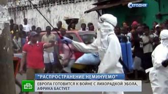 Бастующие могильщики Сьерра-Леоне грозятся оставлять тела умерших от Эболы на улицах
