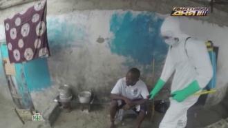 Вирус Эбола принес миллионы доллларов фармацевтическим компаниям