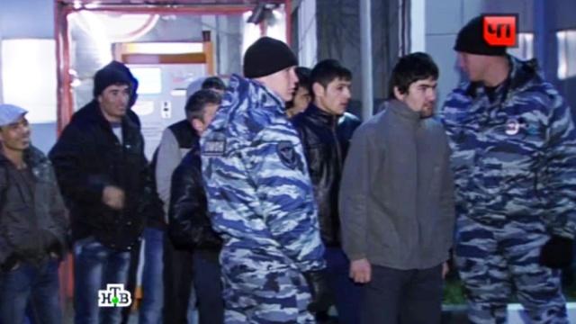 Пятеро кавказцев надругались над двумя московскими школьницами.дети и подростки, задержание, изнасилования, мигранты, Москва, общежитие, расследование.НТВ.Ru: новости, видео, программы телеканала НТВ