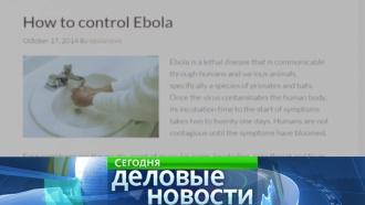 Пропагандисты марихуаны купили домен Ebola.com за 200 тысяч долларов