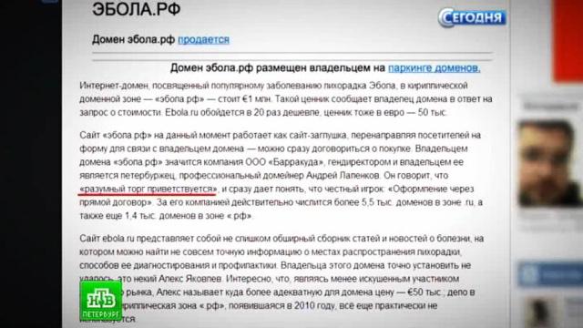 Петербуржец продает эбола.рф за миллион евро.Интернет, Санкт-Петербург, Эбола, болезни, эпидемия.НТВ.Ru: новости, видео, программы телеканала НТВ
