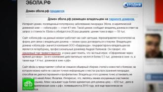Петербуржец продает эбола.рф за миллион евро