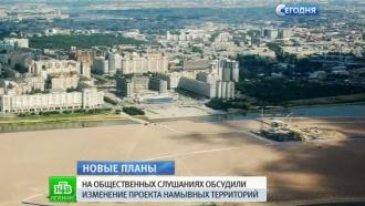 Проект расширения Петербурга на Васильевском острове не внушил оптимизма депутатам и жителям