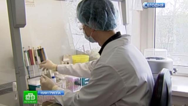 В Петербурге завершается разработка вакцины от лихорадки Эбола.Санкт-Петербург, Эбола, болезни, наука и открытия, эпидемия.НТВ.Ru: новости, видео, программы телеканала НТВ