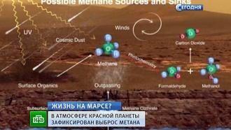 Сенсационные данные марсохода Curiosity взбудоражили научное сообщество