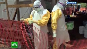 ВСША вирусом Эбола <nobr>из-за</nobr> халатности могли заразиться до 10ученых