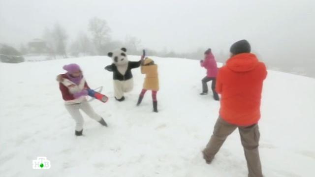 Снежные арбалеты и светящиеся санки разнообразят зимние забавы.зима, игры и игрушки, снег, технологии.НТВ.Ru: новости, видео, программы телеканала НТВ