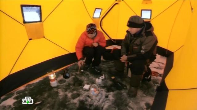Новый уровень зимней рыбалки: хитрые палатки и устройства, собирающие рыб.охота и рыбалка.НТВ.Ru: новости, видео, программы телеканала НТВ