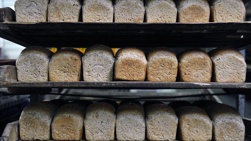 света русский хлеб кострома фото бета игре удобно