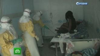 Борьба с лихорадкой Эбола обойдется России в $60 млн