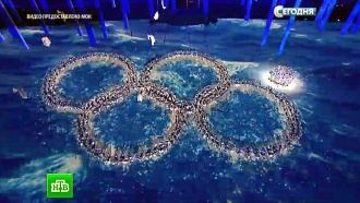 Олимпийский огонь спустя год после Игр продолжает гореть в сердцах миллионов российских болельщиков