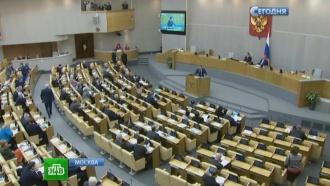 Дума обсуждает порядок исключения НКО из реестра иностранных агентов