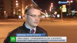 Петербургские политологи опасаются ухода Дмитриевой в неформальную оппозицию